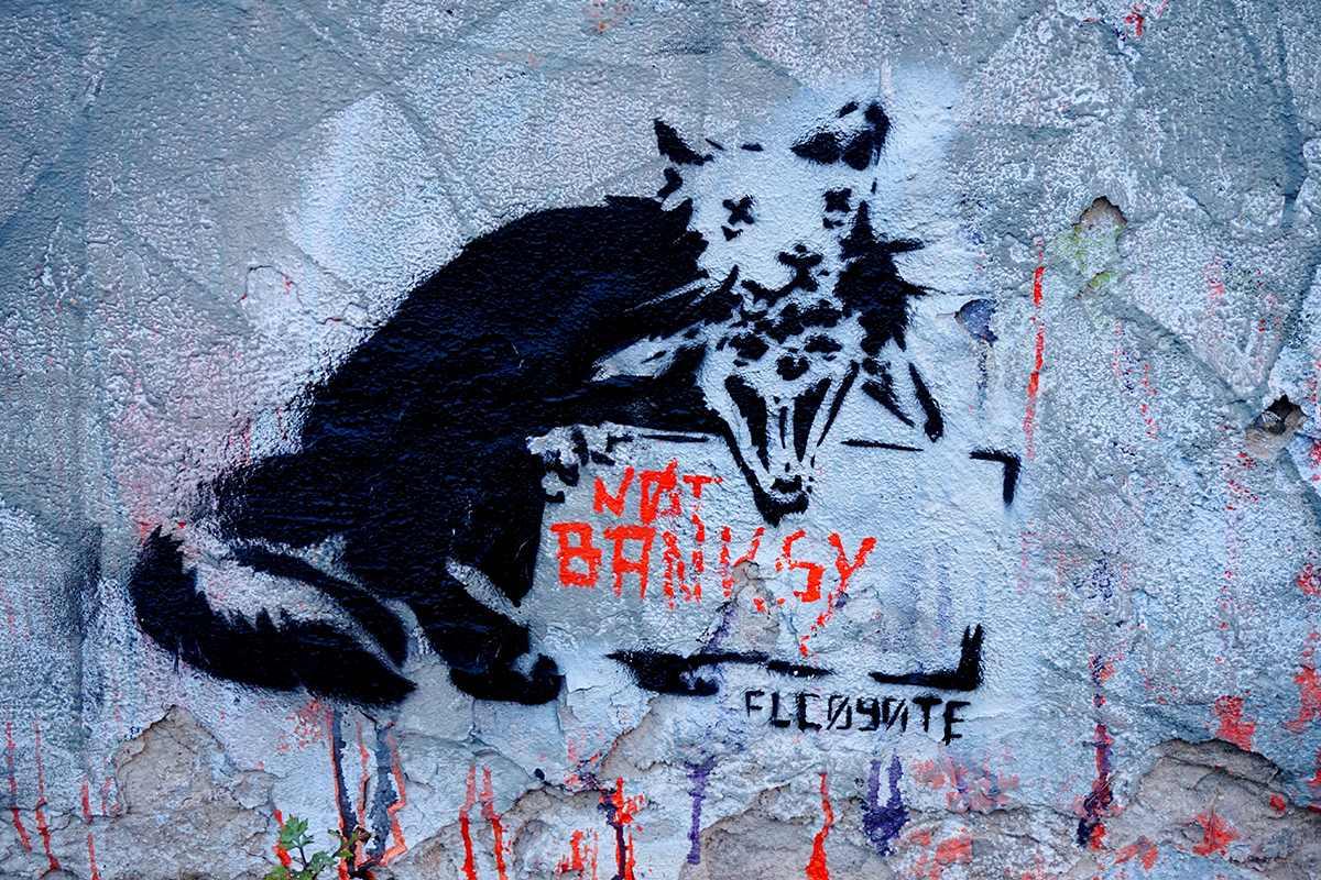 El Coyote - Not Banksy, west Berlin