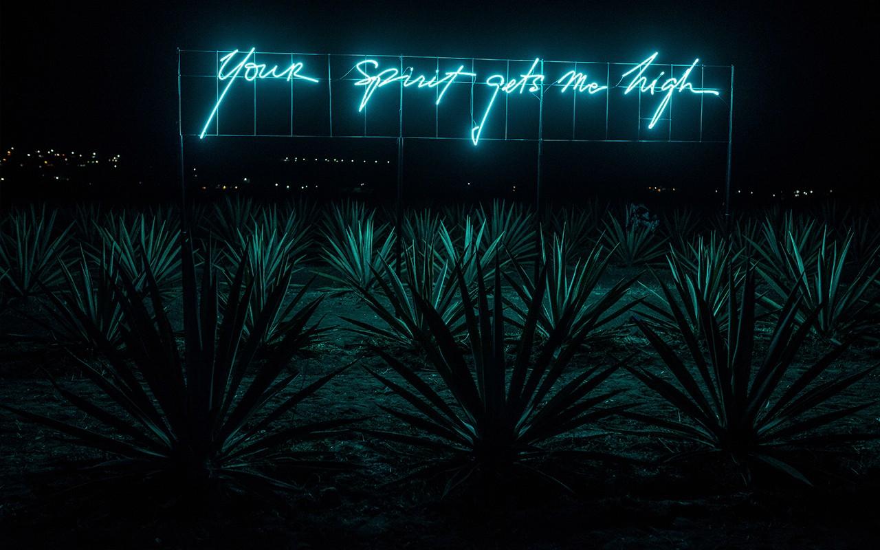 olivia steele neon circle culture gallery